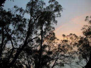 SunsetRainbow